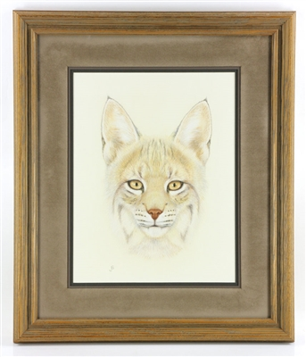 Portrait of a Bobcat, Colored Pencil Drawing