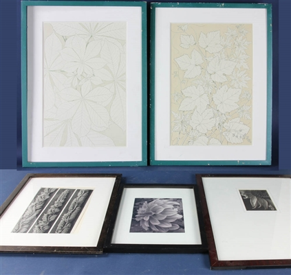 Framed Prints and Photographs