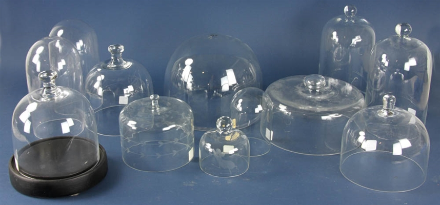 Group of Glass Domes with Wood Base