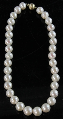 South Sea Pearl Necklace 14k Gold Clasp