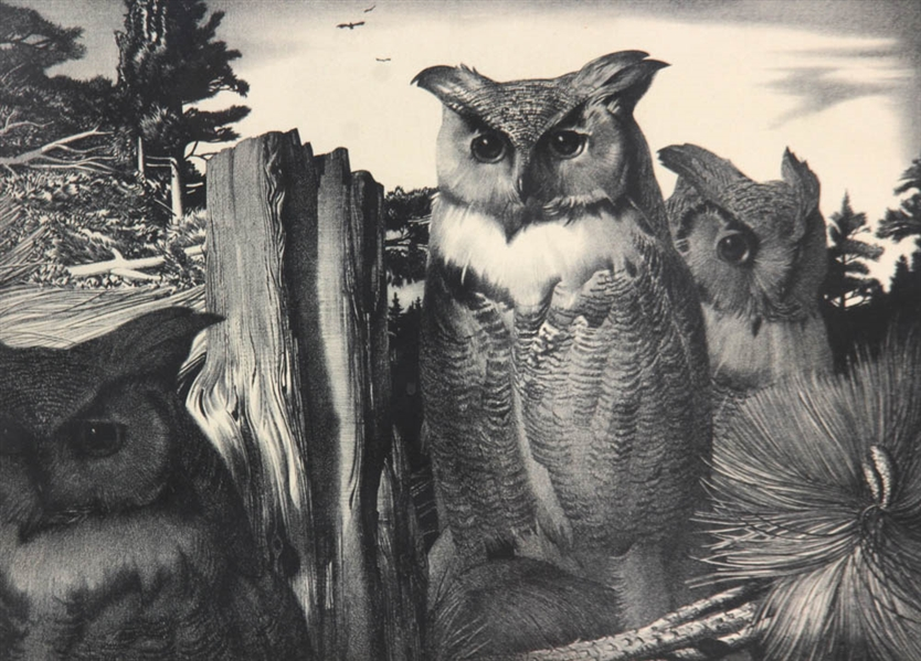 Stow Wengenroth, Stately Owls