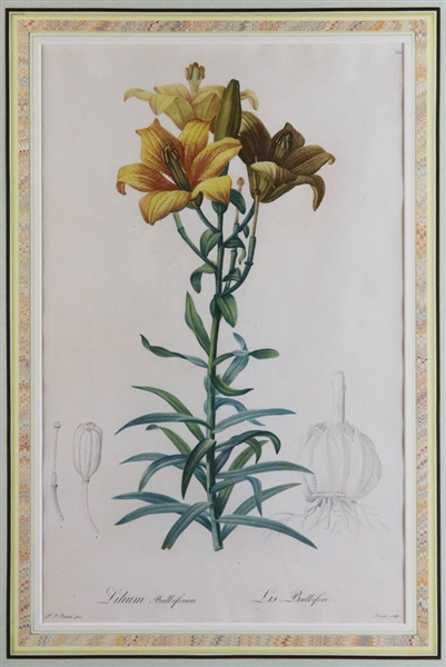 Pair of Floral Lithographs